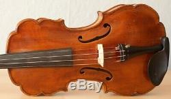 Very old labelled Vintage violin Castelli fiddle Geige