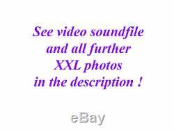 Beaux Old Lionhead Violon Vidéo Antique Rare Lion Head 114